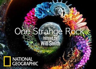 Image result for one strange rock